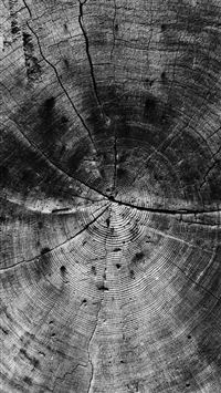 Wood Line Texture Old Dark Pattern Bw iPhone 6(s)~8(s) wallpaper
