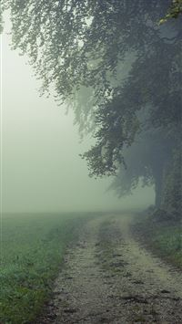 Country Misty Roads iPhone 6(s)~8(s) wallpaper