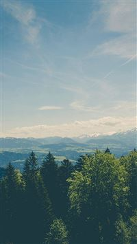 Mountain Valley Pine Canopy Vintage iPhone 6(s)~8(s) wallpaper