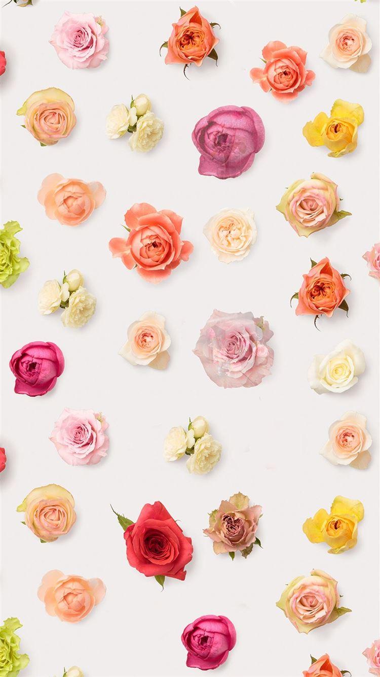 Best Aesthetic Iphone 8 Wallpapers Hd Ilikewallpaper