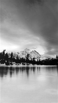 Frozen Lake Winter Snow Wood Forest Cold Bw Dark iPhone 6(s)~8(s) wallpaper