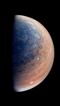 Jupiter Planet As Seen By NASAs Juno Spacecraft iPhone 6(s)~8(s) wallpaper