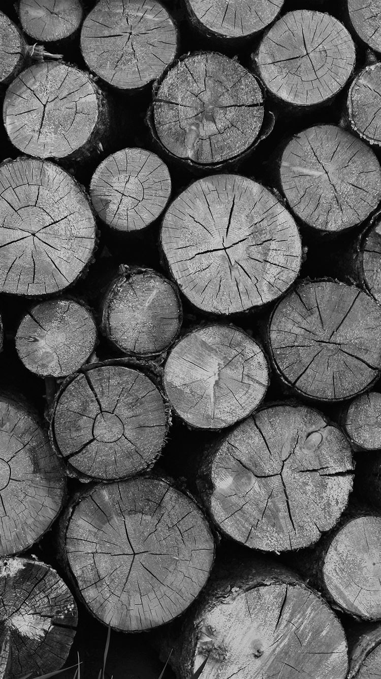 Wood Nature Cut Pattern Dark Bw Iphone 8 Wallpapers Free
