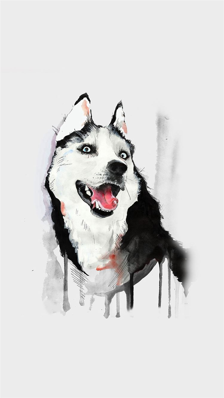 Best Husky Iphone 8 Wallpapers Hd Ilikewallpaper