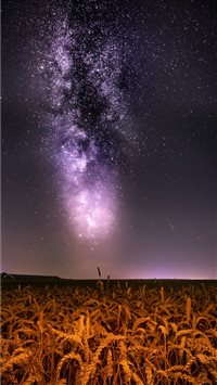 Milkyway over wheat field iPhone 6(s)~8(s) wallpaper