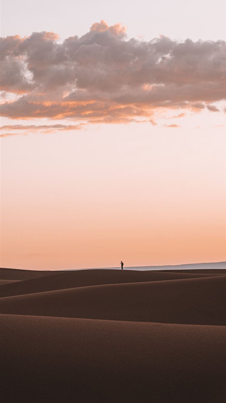 silhouette of person standing on desert iPhone 8 wallpaper