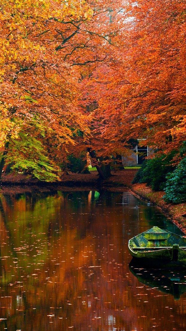 Lake In Autumn Landscape IPhone Se Wallpaper