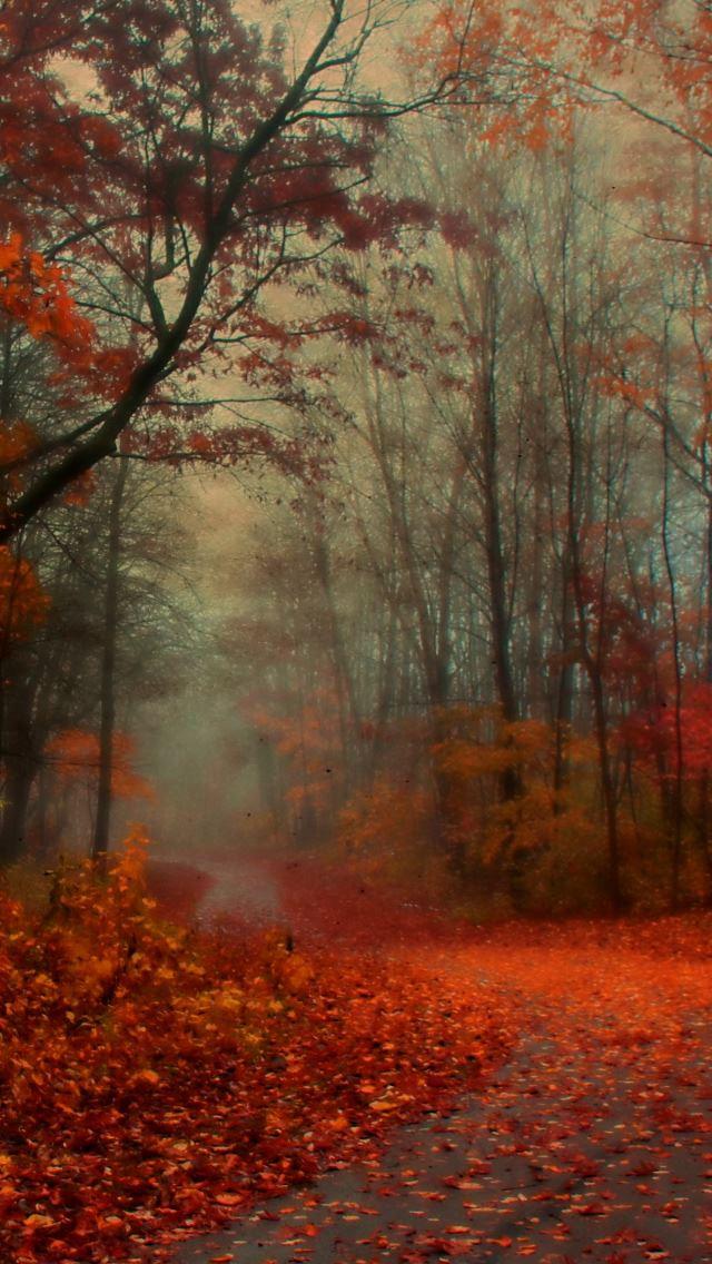 картинки осень для айфона