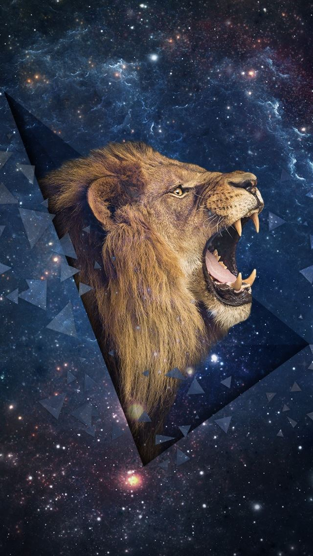 Outer Space Shouting Lion Iphone Se Wallpaper Download Iphone