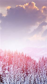 Landscape Winter Snow Trees Mountains Forest Sky Clouds iPhone 5(s/c)~se wallpaper