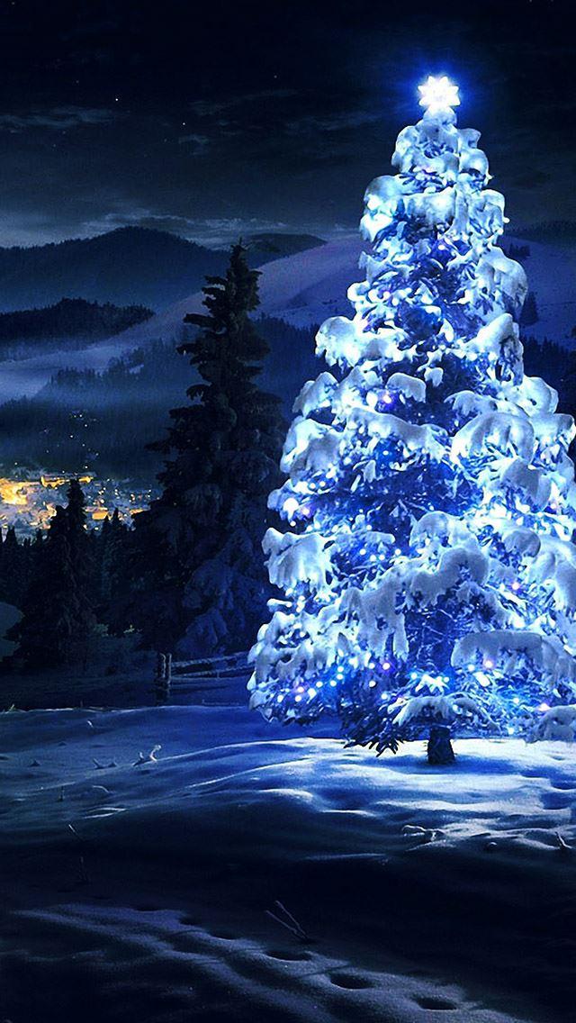 white christmas tree light iphone se wallpaper
