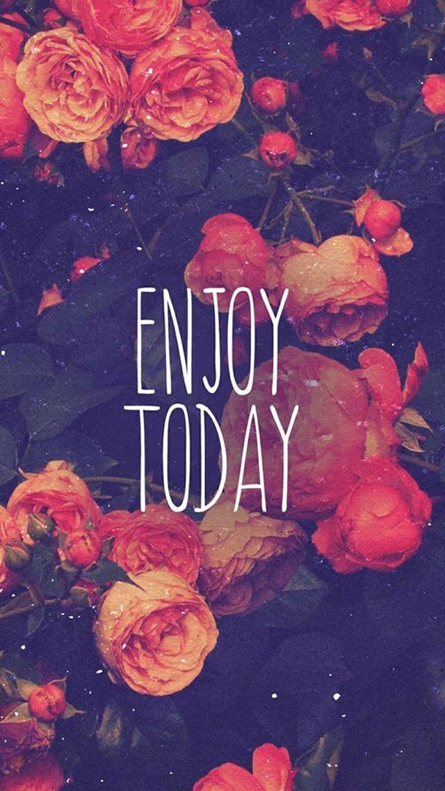 Enjoy Today Red Rose IPhone Se Wallpaper