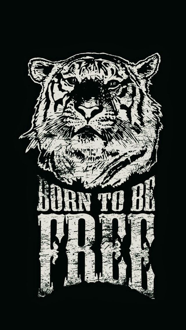 Born To Be Free Tiger Illustration IPhone Se Wallpaper Download