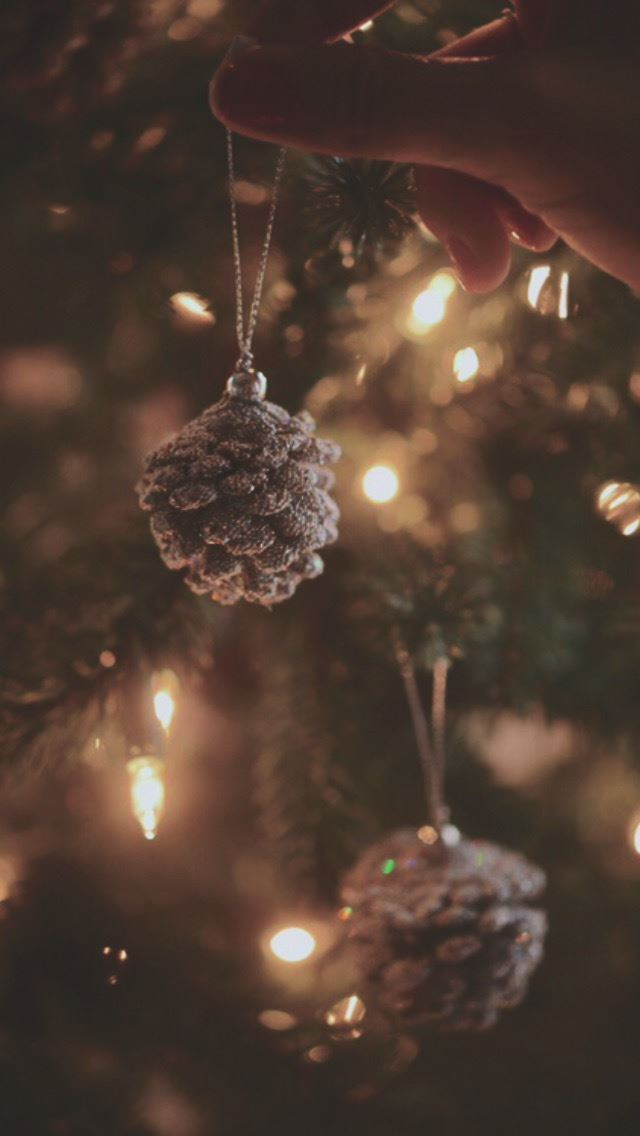 Decorating Christmas Tree Pine Cones Iphone Se Free Download