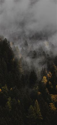 The autumn iPhone 5(s/c)~se wallpaper