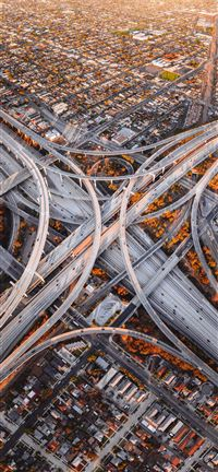 Judge Harry Pregerson Interchange iPhone 5(s/c)~se wallpaper