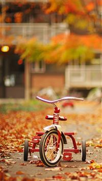 Tricycle iPhone 5(s/c)~se wallpaper