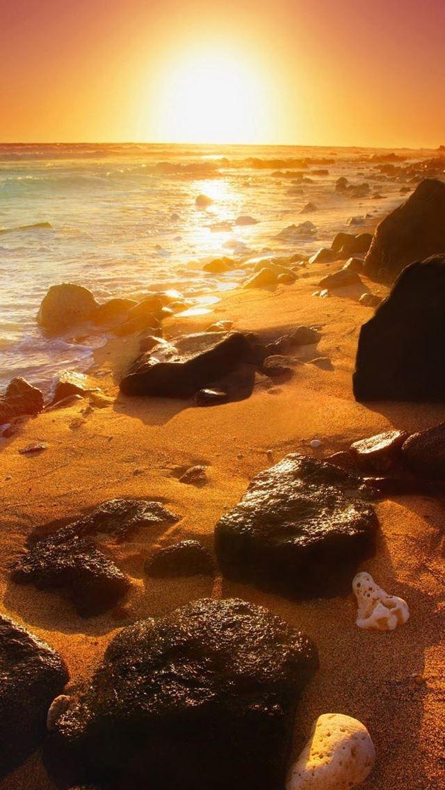 Summer Beautiful Sunset IPhone Se Wallpaper