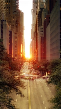 Sun Rising Over A Street 2 iPhone 5 wallpaper