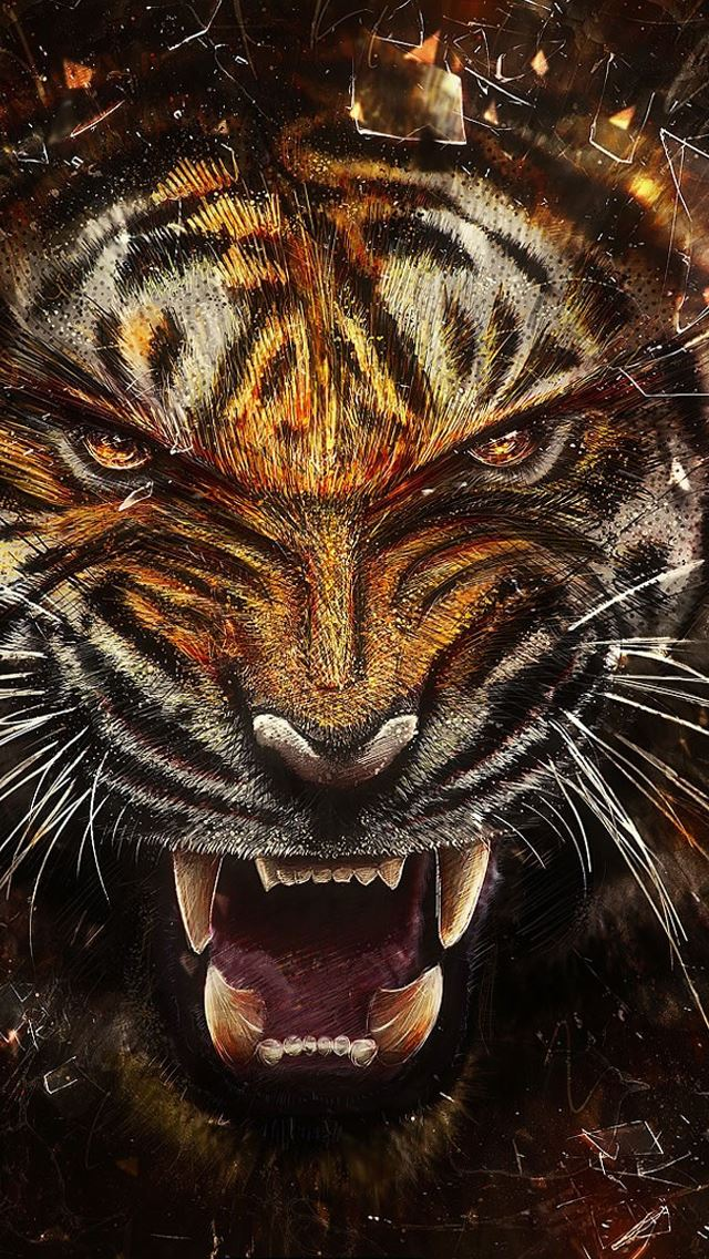 Tiger backgrounds iPhone wallpaper