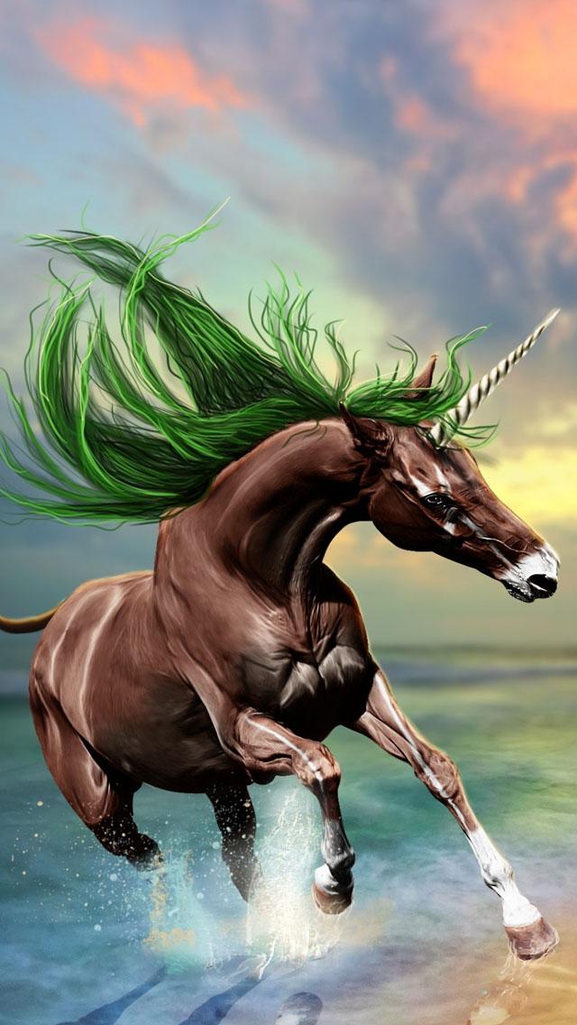 Best Horse Iphone Wallpapers Hd 2020 Ilikewallpaper