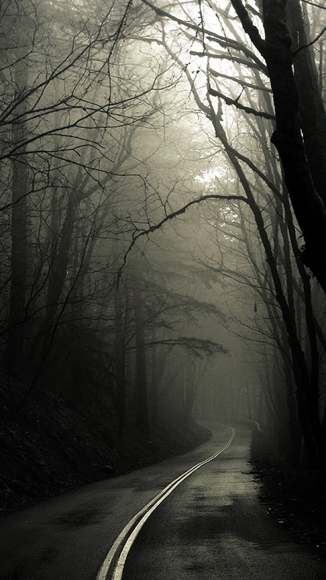 Dark Road Forest iPhone wallpaper