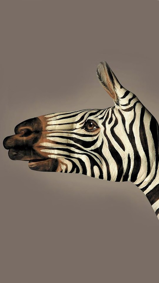 Zebra Painted Iphone Wallpapers Free Download