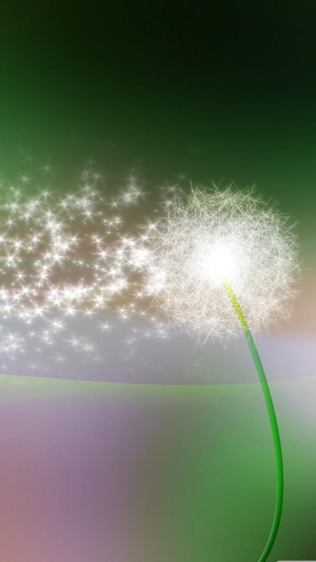 Dandelion Green Iphone Wallpapers Free Download