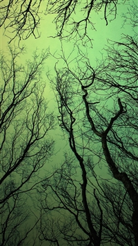 Green sky iPhone 5s wallpaper
