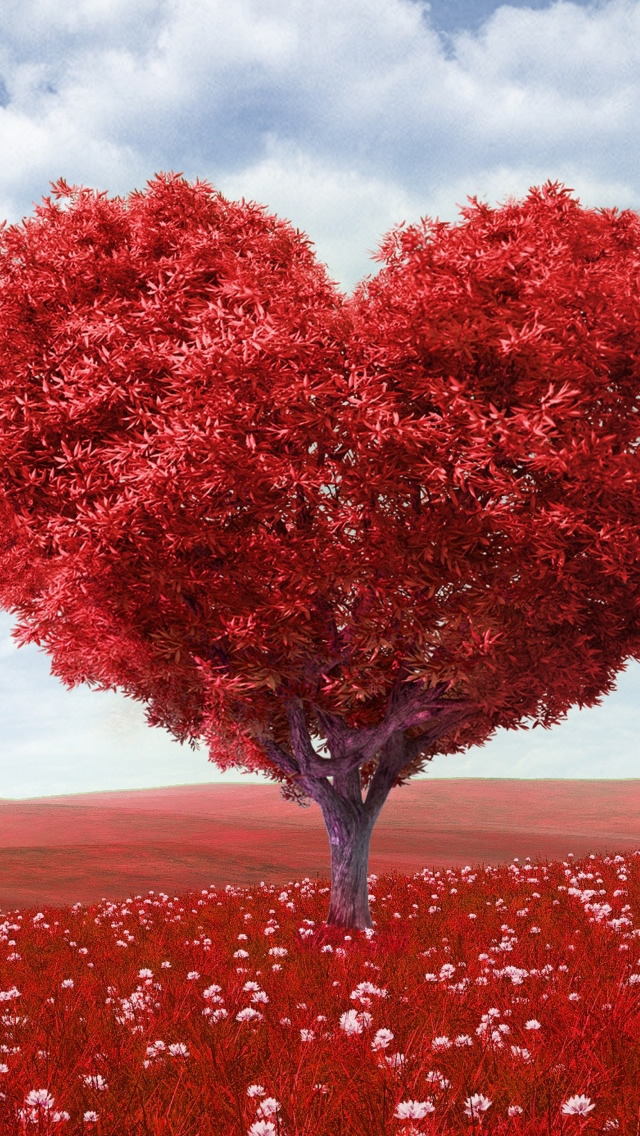 Valentines Day iPhone wallpaper