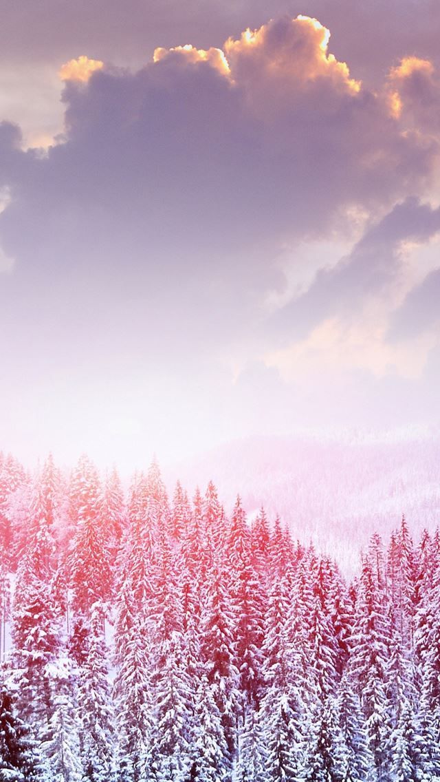 Landscape Winter Snow Trees Mountains Forest Sky Clouds iPhone wallpaper