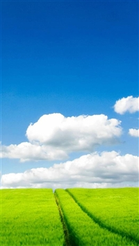 Nature Grass Field White Clouds iPhone 5s wallpaper