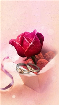Abstract Rose Gift Box iPhone 5s wallpaper