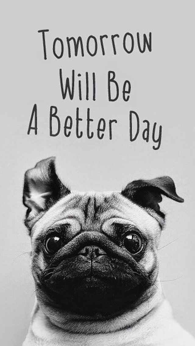 Tomorrow Will Be A Better Day Pug Face iPhone wallpaper