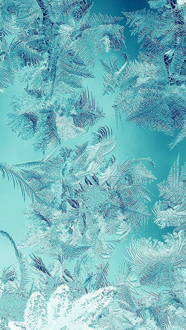 Ice Pattern Green Snow Nauture Christmas Iphone Wallpapers