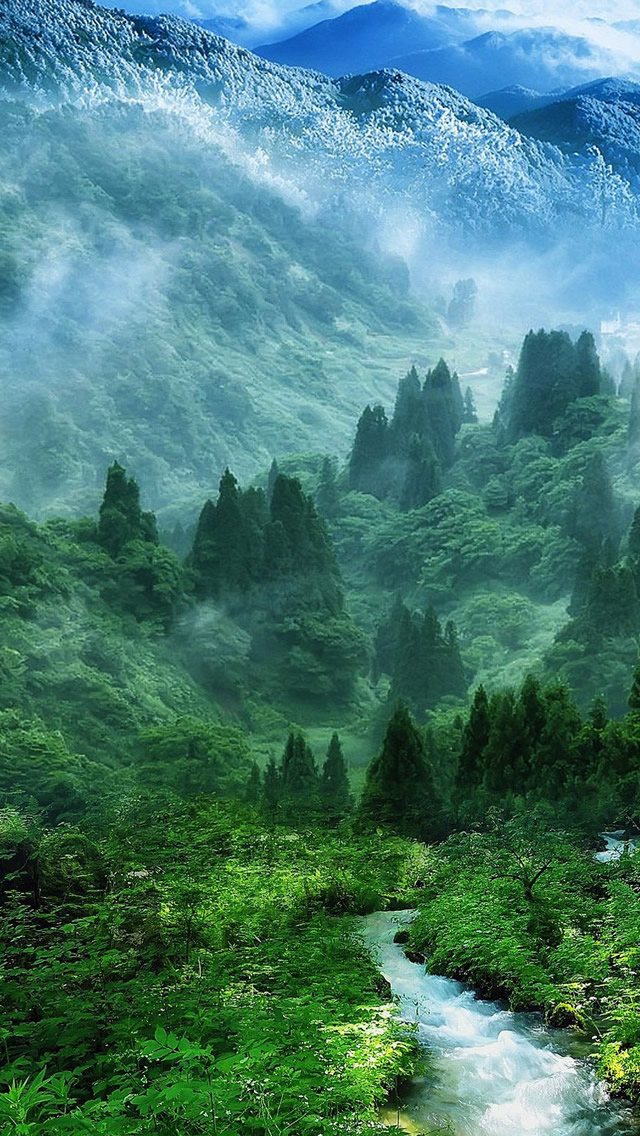 Nature Mist Mountain Wood Forest River Landscape iPhone wallpaper