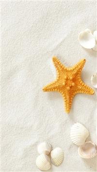 Pure Seaside Beach Starfish Seashell iPhone 5s wallpaper