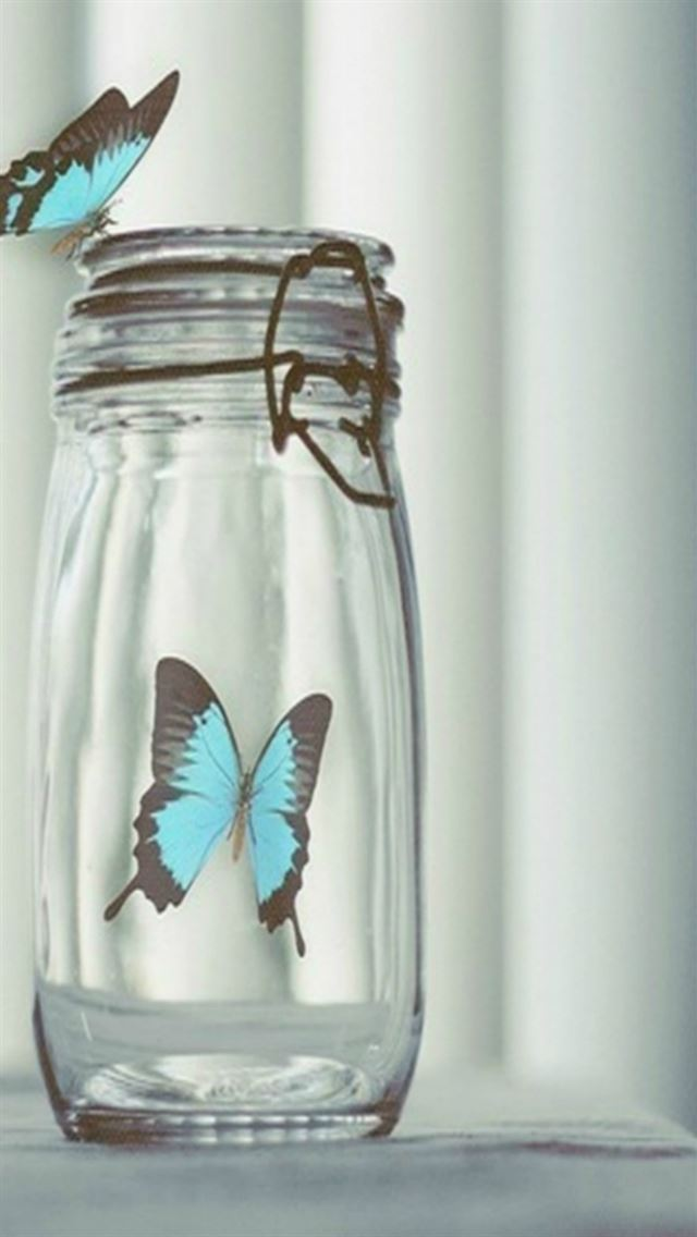 Blue Beautiful Butterfly In Glass Bottle iPhone wallpaper