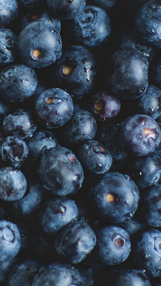 Blue Berry Healthy Fruit Eat Food Nature iPhone wallpaper
