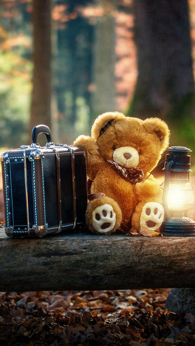Forest Cute Bear Suitcase Lovely iPhone wallpaper