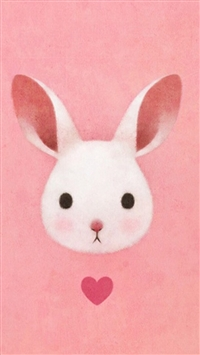 Best Rabbit Iphone Wallpapers Hd Ilikewallpaper