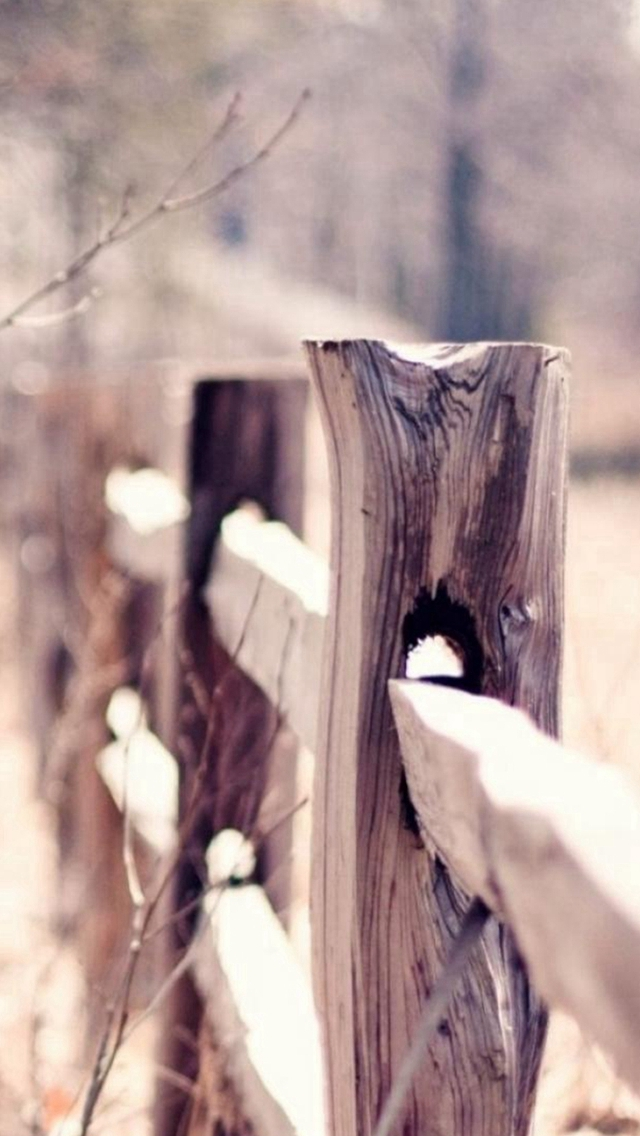 Nature Cold Wooden Fence Bokeh iPhone wallpaper