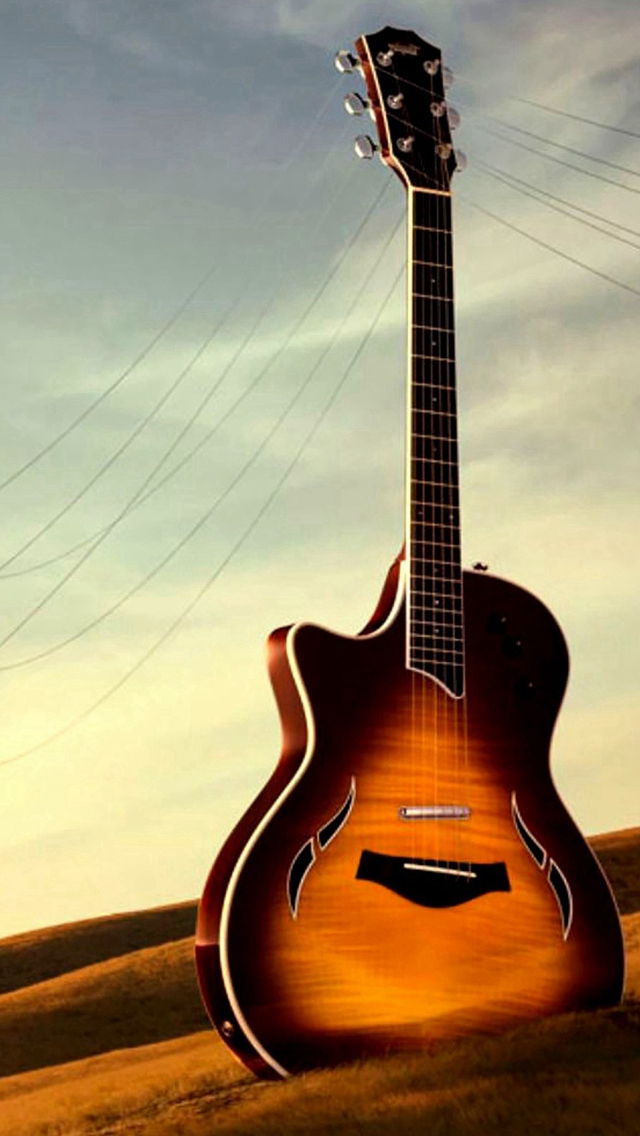 Guitar Utility Wither Field iPhone wallpaper
