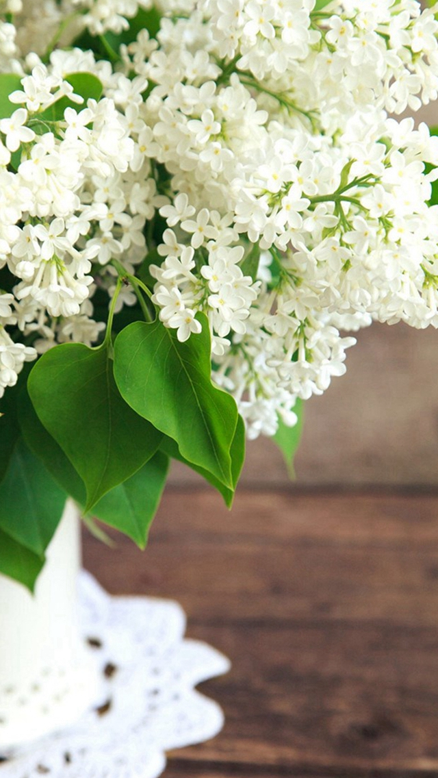 Pure White Flowers Plant Vase  iPhone wallpaper