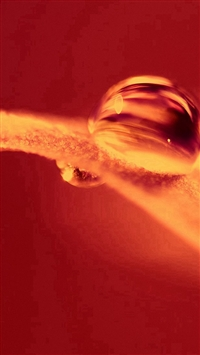 Hot Fire Leaf Red Nature Droplet iPhone 5s wallpaper