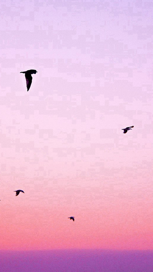 Sky Bird Pink Red Sunset Nature iPhone wallpaper