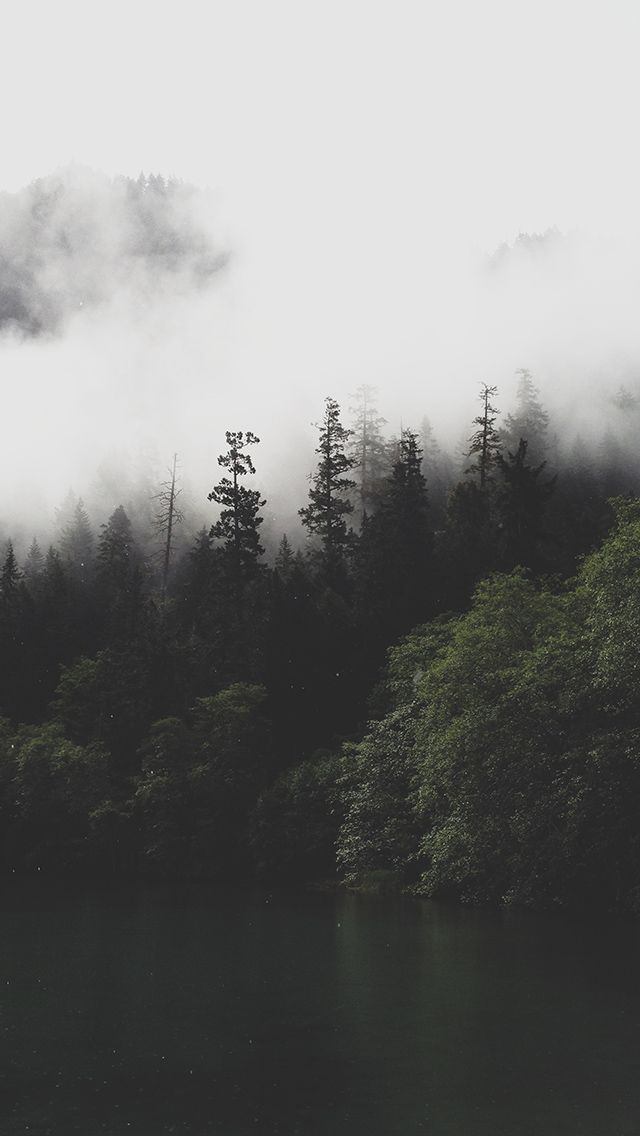 Mountain Forest Lake Misty Iphone Wallpapers Free Download