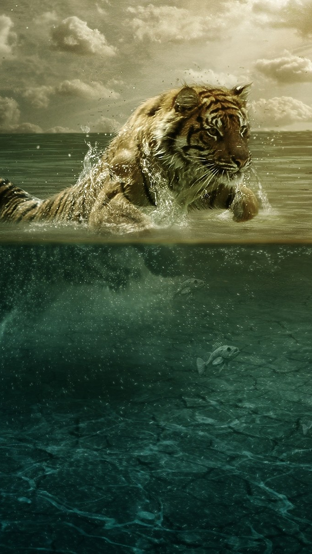 Tiger in Water iPhone wallpaper