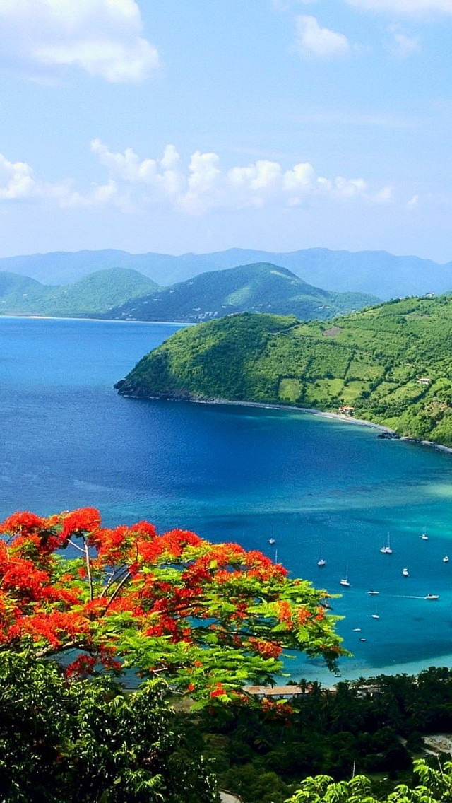 Seashore Landscape iPhone wallpaper