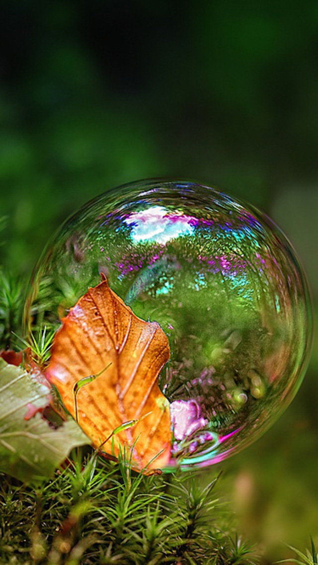 Bubble Iphone Wallpapers Free Download